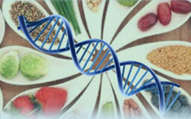 Desarollo-de-Alimentos-Funcionales-y-Bioproductos