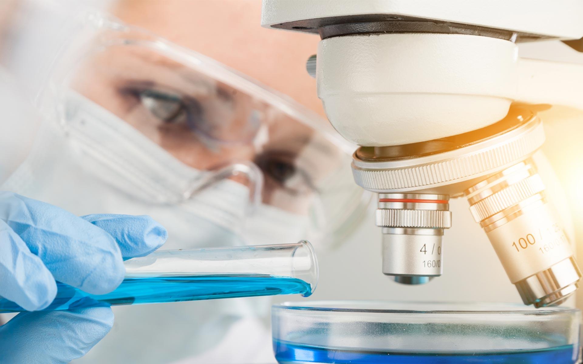 insibio-grupo-biologia-experimental
