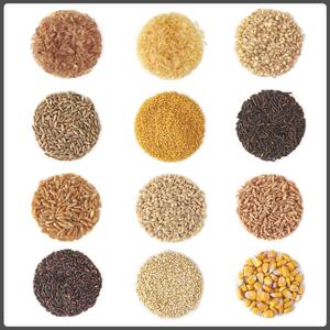 insibio-alimentos-nutricion
