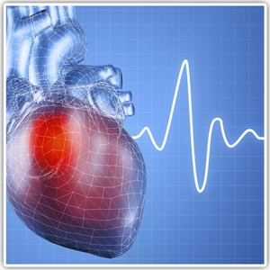 monitoreo-cardiaco-licam-myriam-herrera
