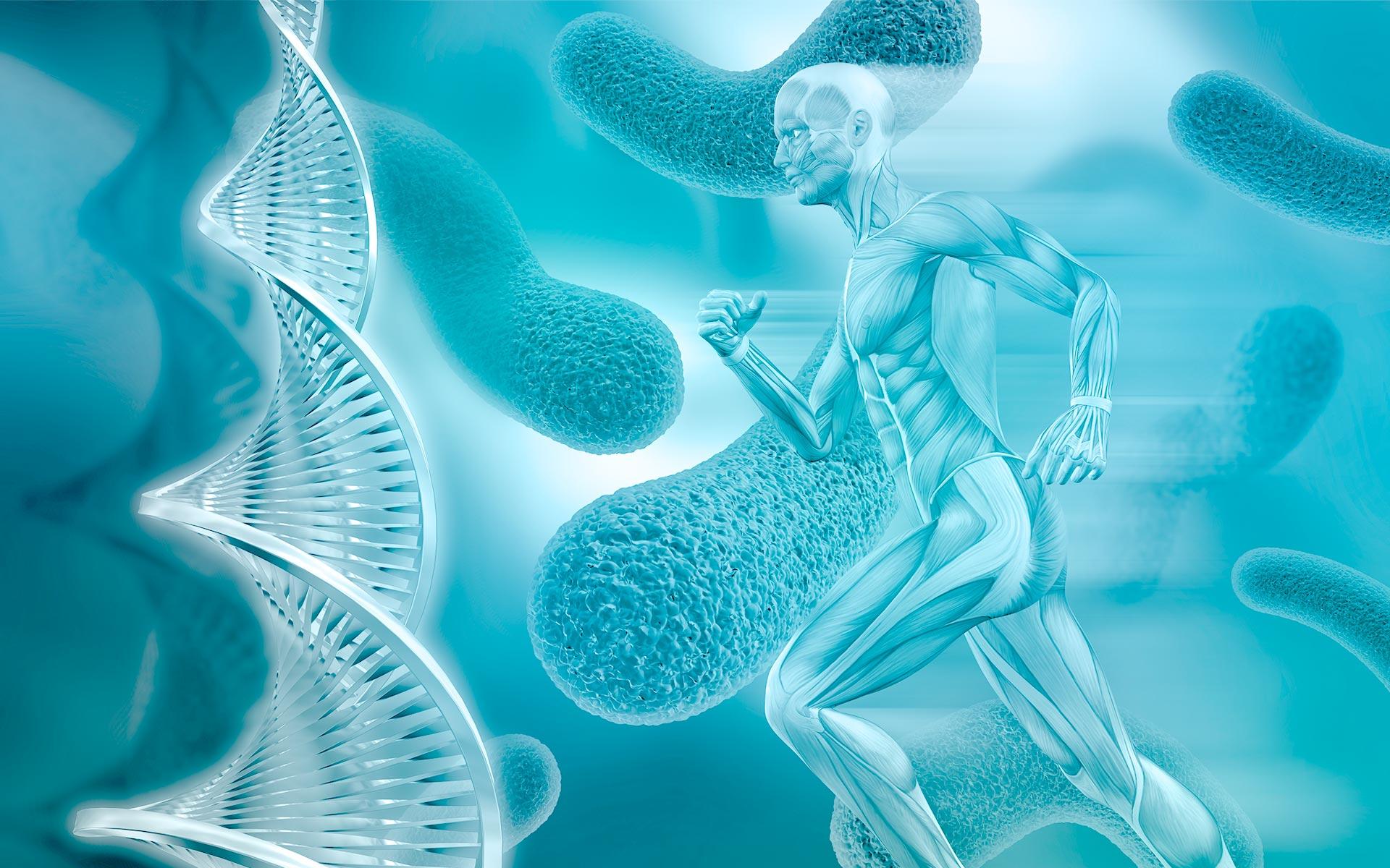banner-fisiologia-web-2020